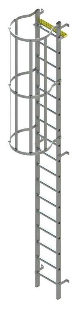 vertical ladder with cage