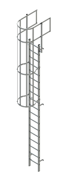 vertical ladder with walkthrough and cage